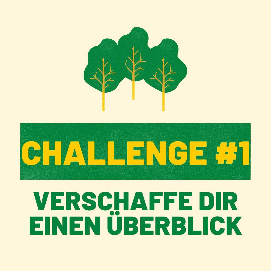 Challenge#1