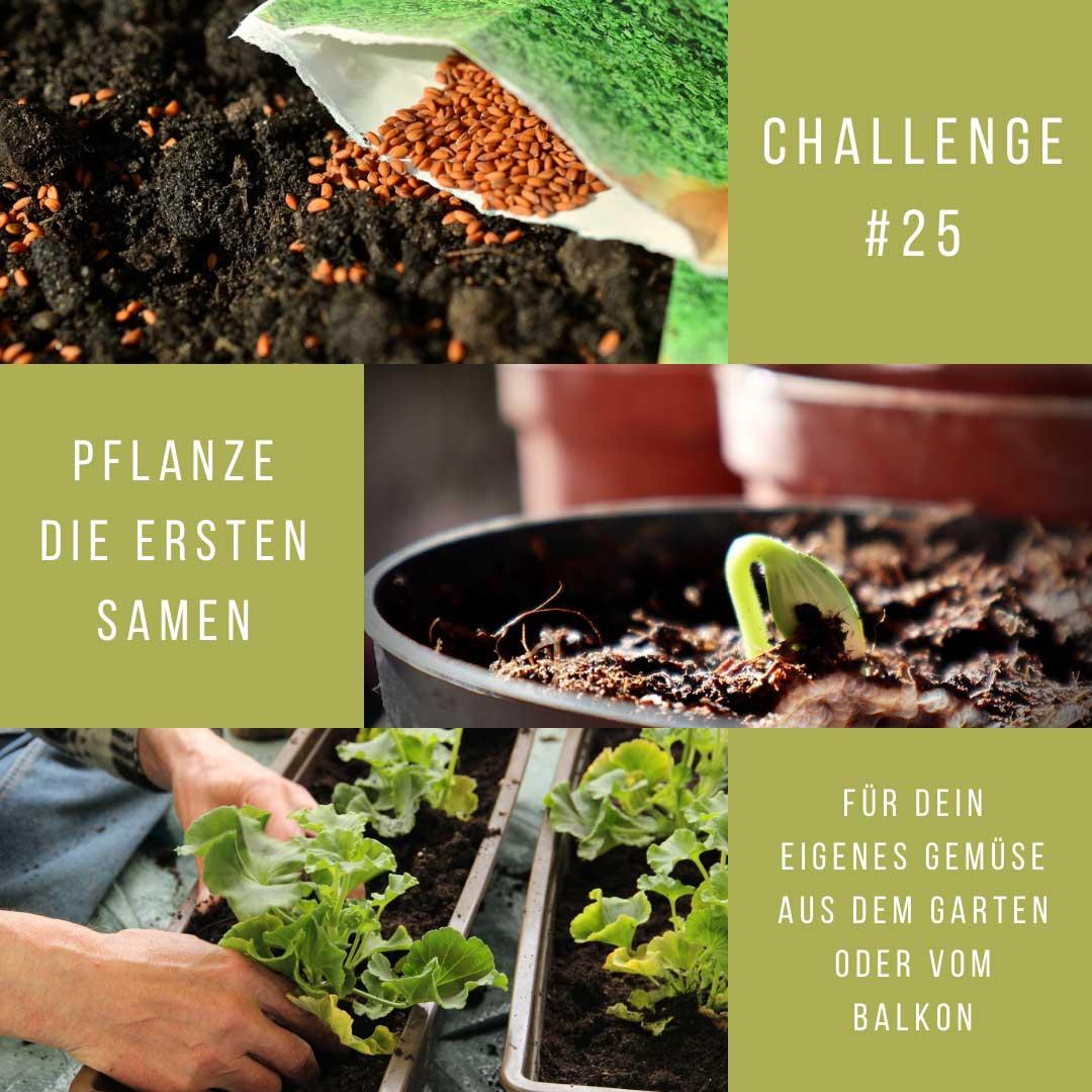 Challenge#25